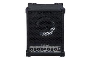 Roland CM-30 - 30W Studio & Stage Monitor