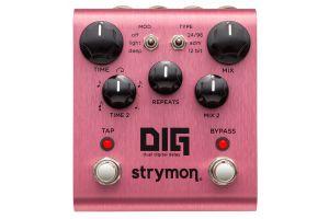 Strymon Dig & MiniSwitch Bundle Set