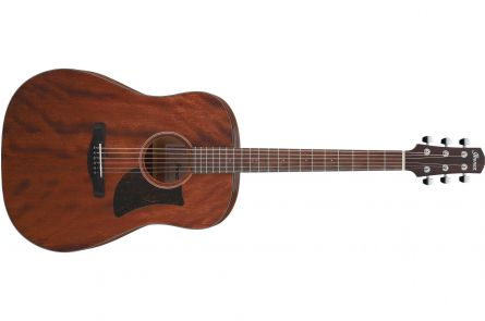 Ibanez AAD140 OPN Advanced Acoustic - Open Pore Natural