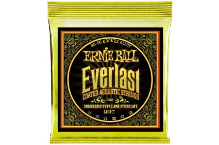 Ernie Ball 2558 Everlast Bronze Light .011 - .052