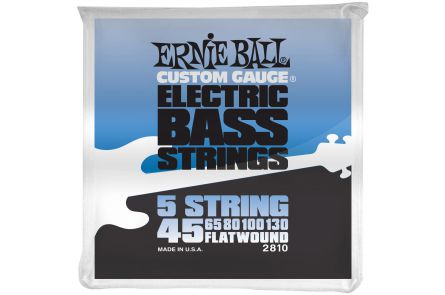 Ernie Ball 2810 Flatwound 5-String Bass .045 - .130