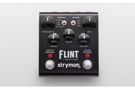 Strymon Flint & MiniSwitch Bundle Set