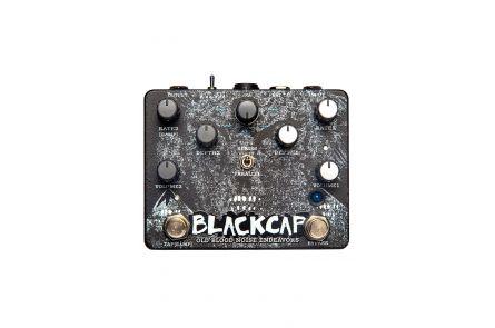 Old Blood Noise Endeavors BlackCap - Asynchronus Dual Tremolo