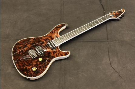 Mayones Regius 6 Custom Eye Poplar - Trans Dirty Brown Gloss