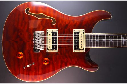 PRS SE Custom 22 Semi-Hollow Limited Edition - Tortoise Shell